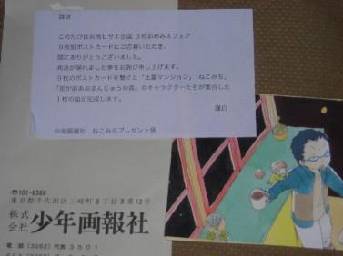 nekomichi-iwaoka.jpg
